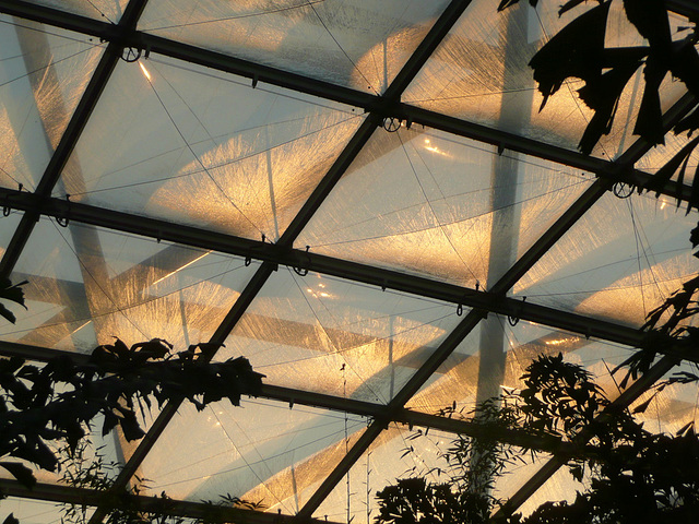 Zoo Leipzig - Lichtreflexionen