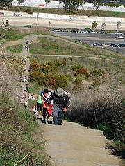 Climbing Baldwin Hill (2556)
