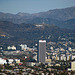 Hollywood from Baldwin Hills (2536)
