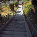 Crosby Place Stairs (0434)