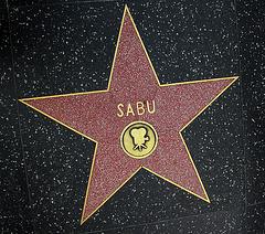 Great L.A. Walk (1271) Sabu