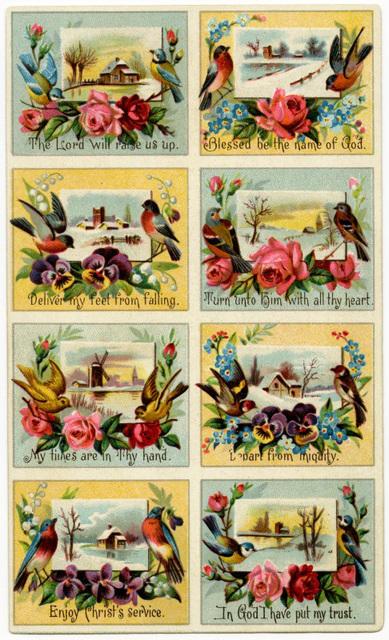 Bird-Themed Sunday School Cards