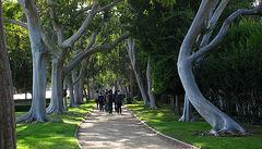 Great L.A. Walk (1493)