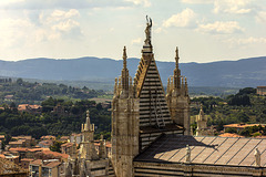 Siena view from tower