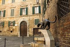 La statua della Pantera in Piazza del Conte(Contrada della Pantera) small