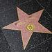 Great L.A. Walk (1378) Errol Flynn