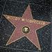 Great L.A. Walk (1382) Woody Woodpecker
