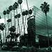 Great L.A. Walk (1389B)