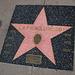 Great L.A. Walk (1392) LAPD