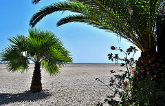 """Playa desde el """"chiringuito"""""""
