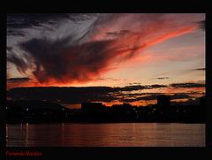 Puerto Malaga 5