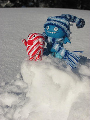 Icy and Domo in the snow 1/3