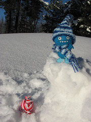 Icy and Domo in the snow 2/3