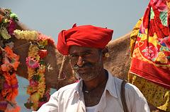 Camel man. Gujarat, India