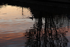 Magie des reflets