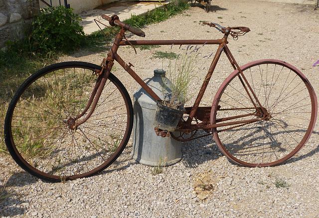 ...oui...oui...je l'ai fait le Tour de France......mais , il y a longtemps...
