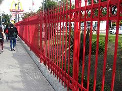 Great L.A. Walk (1121)
