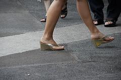 wedgewalk (21)