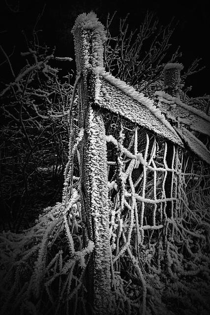 cold_edge