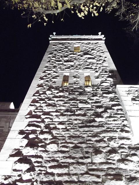 Torticolis nocturne / Night stick-neck - 17 novembre 2011