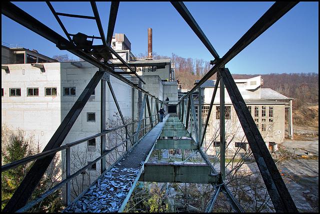 bridge for the brave