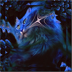Brillants d'éclairs ou ténébreux Comme des ciels dans des paupières, Il est de grands yeux douloureux Qui disent des peines amères...