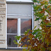 Fenster in Regensburg