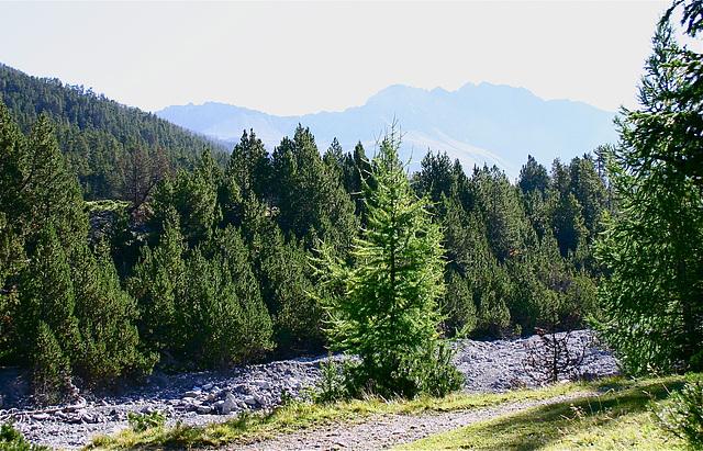 Parc national suisse