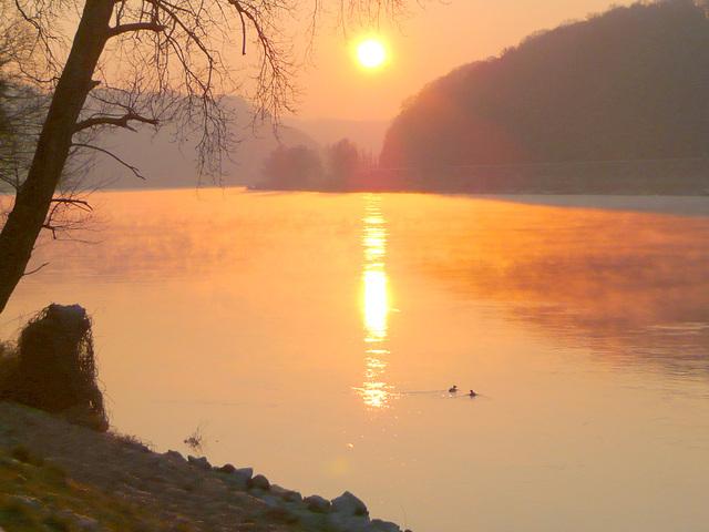 Sonnenaufgang im Elbtal am 1.2. bei -11°C