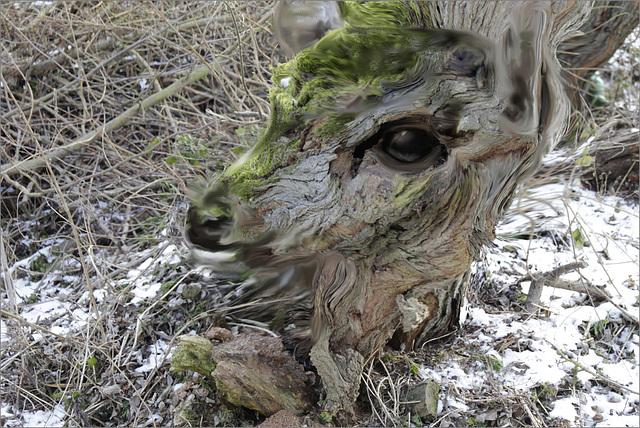 Bambie Troll