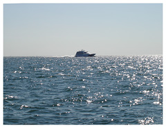 Ferry atmosphere / Ambiance traversier - 12 août 2006.