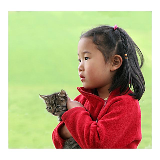 l'enfant au petit  chat-tigre