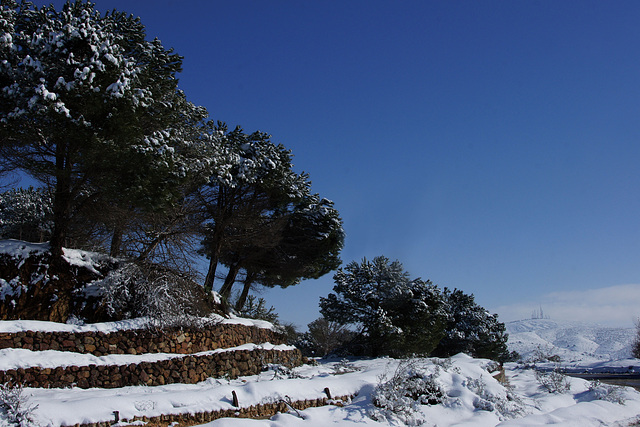 Paysage Constantinois