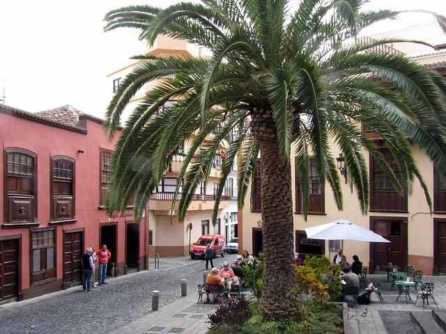 IMG 3148 Plaza de la Alameda
