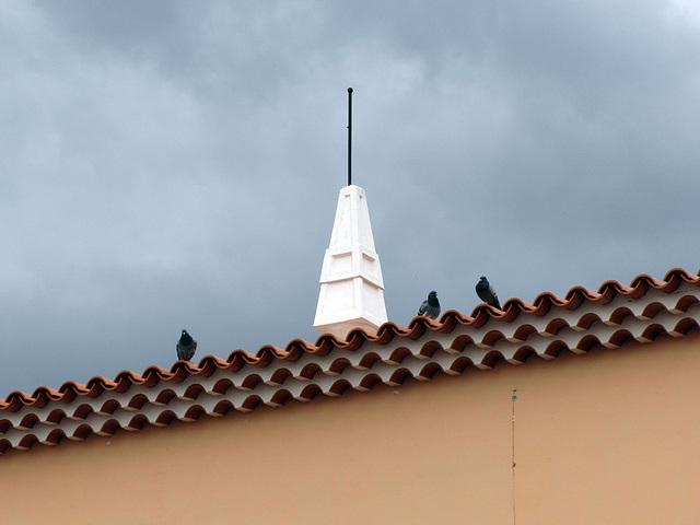 IMG 4583 Auf dem Dach