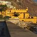 IMG 3489 Funchal