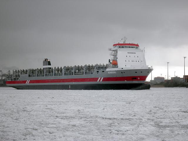 Containerschiff   RIJNBORG