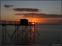 Sun fishing