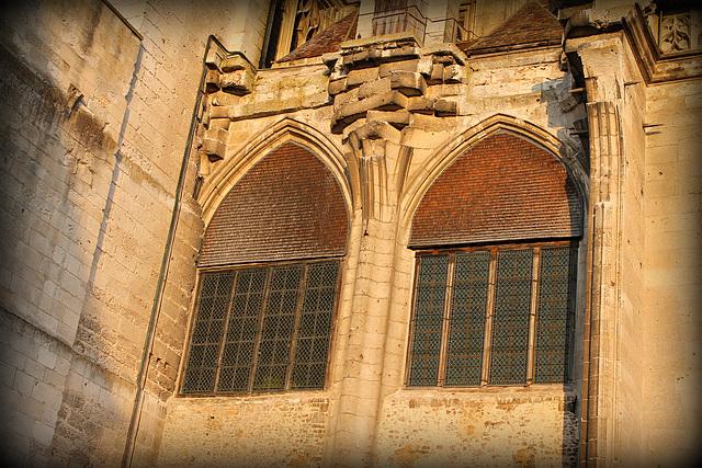 la cathédrale St Pierre****