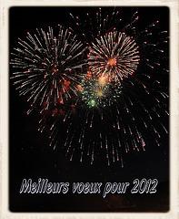 Bonne et heureuse année à toutes et à tous...