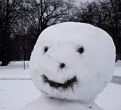 Frozen expression