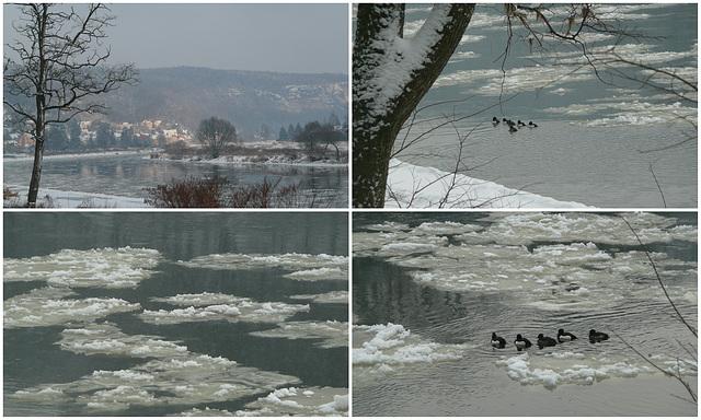 Winterlicher Spaziergang an der Elbe