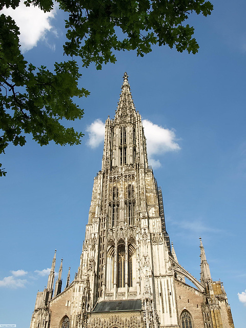 P6044317ac Ulm Town Cathedral Munster  1377-1529 Spire Completed 1890