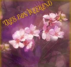 Le printemps s'annonce toujours rempli de promesses... sans jamais nous mentir, sans jamais défaillir.  »