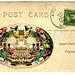 postcard from disneyland (chiche)