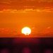 IMG 4512 Good Morning Sun 5