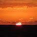 IMG 4501 Good Morning Sun 4