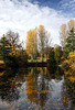 Autumn Colour, Foulis, Evanton, Ross-shire, Scottish Highlands