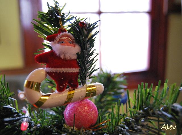 Καλά Χριστούγεννα ! Merry Christmas !