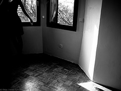 [ shadows ]